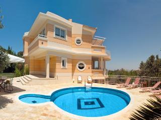 Villa Asimenia 2388, Adele