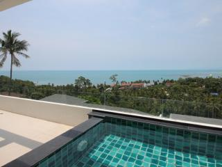 2 bedroom apartment with sea view and private pool