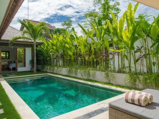 Cozy 3, 2 Bedroom Villa with private pool Sanur