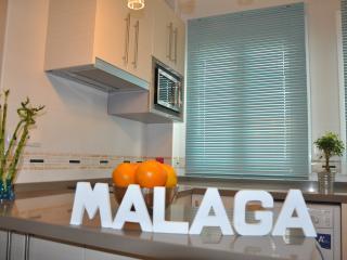 LOFT au centre historique de Malaga