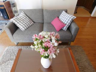 LCT Charming city apartment, Split