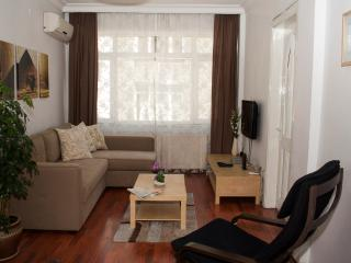 Modern flat in the heart of Beyoglu (117), Istanbul