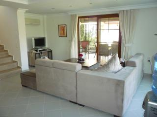 Cool Living Room with Wifi, Satellite TV, DVD, and iPhone Dock Speaker system
