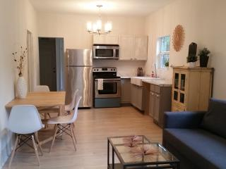 newly remodeled 2b/2b near downtown