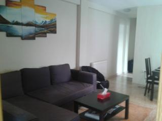 coquet appartement ensolleille