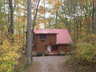 ENJOY PEACE AND TRANQUILITY AT THIS CHARMING MOUNTAIN HOME, Mineral Bluff