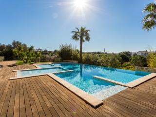 Luxury 2 bedroom apartmetn with pool near Marina, Lagos