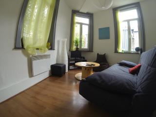 Appartement agréable et lumineux, Lille
