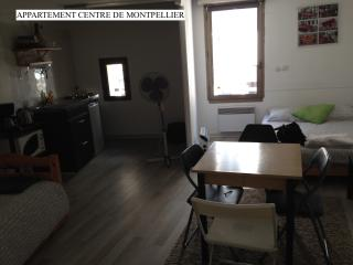 Appartement Centre de Montpellier