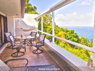 St. Paradise Luxury Condo In St. Thomas, Charlotte Amalie