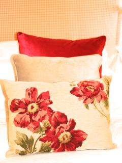 Pretty cushions...