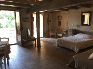 Appartement de charme avec grande terrasse, Montfrin
