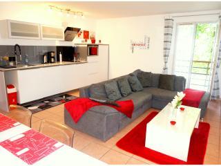 DISNEYLAND PARIS spacieux 3 pièces pour 8 personne, Serris