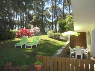 T4 -  6/8 personnes - 3 chambres - Terrasse/Jardin, Mimizan