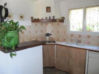 Grande Maison en plein Maquis Corse