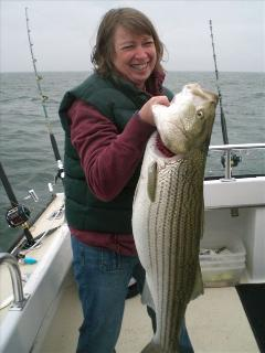 Have you ever caught a 39' Rock fish. You can with Captain Harry  from kingfisher II.
