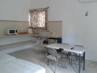 IB-2 Departamento tipo estudio en Iberica