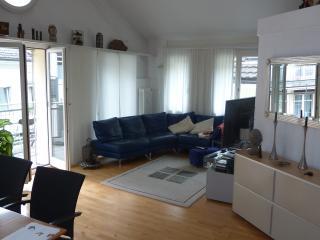 Stadt-Wohnung mit Atmosphäre & Stil, Basel