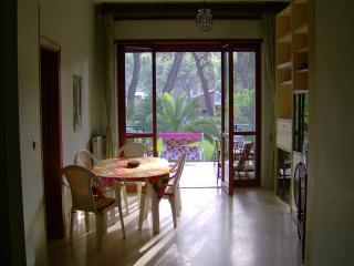 Villa Agapanthus , prato e fiori , freschezza e comodità