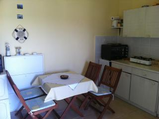 Studio Apartment Petrcane-Zadar