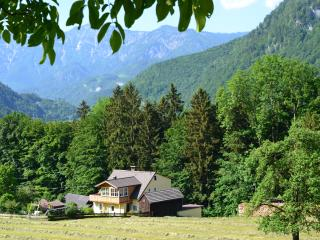 Alpine Meadows / Alpenwiesen, Bad Ischl