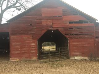 Sleep in a Barn!!, Albemarle