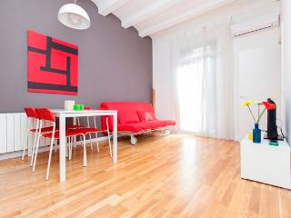 Spacious and Bright Apartment in Eixample