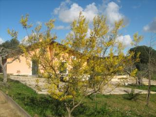 Villa Jacaranda, Caltagirone