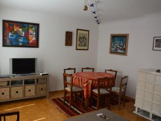 COSMOPOLITAN apt. convenient location Schonbrunn