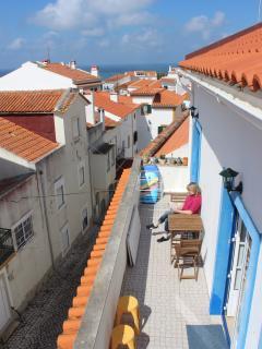 Terrasse accessible de la cuisine et du salon