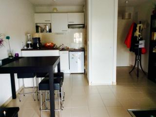 Charmant appartement nord de toulouse, Tolosa