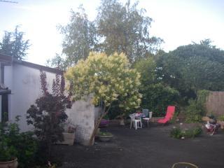 Appartement f1 BIS rez De jardin AVEC cour, Premilhat
