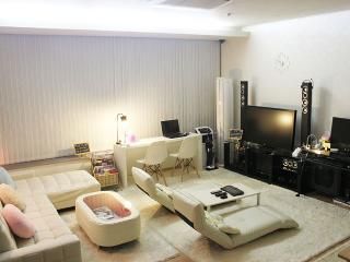 New apartment 3 rooms whole rent A, Seoul