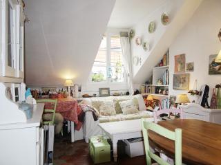 Charming duplex rue de Sèvres P0628, Paris
