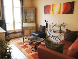 Appartement parisien typique Champs Elysees 3 piec