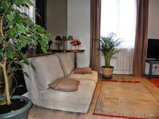 Studio meublé 1/4 personnes entre paris et disney, Bry-sur-Marne