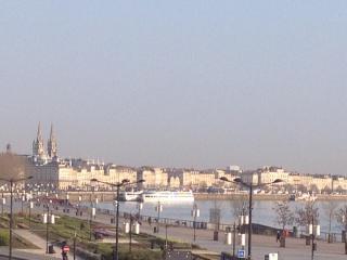 Luxe et vue garonne au centre historique, Bordeaux