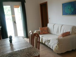APARTMENT PETRANIC A7 GREEN, Tijesno