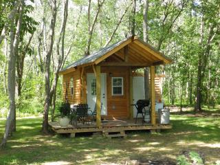 Tennessee River Gorge Island Cabin 3  17 mi. Chatt. 'Stay 3 nights 4th Free'.