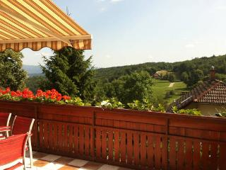 Hilltop house & terrace, 15 min from Ljubljana