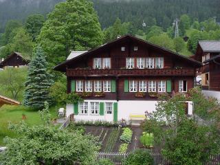 Studiowohnung mit Blick auf Eiger - anderschonegg, Grindelwald