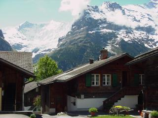 Dachwohnung mit Blick auf Eiger - anderschonegg, Grindelwald