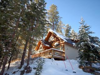 Ridgetop Pines Retreat - Convenient, Secluded, McCall