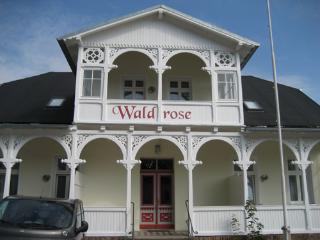 Fewo Jasmund - Pension Waldrose, Sellin