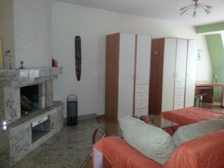 Spacious apartment with 2 bedrooms and a kitchen