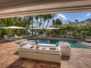 Stunning Villa near the Beach, Altos Dechavon