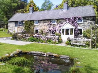 EITHIN FYNYDD stunning views, large grounds, woodburning stoves in Llanwchllyn