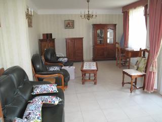Le grand salon, o'u peuvent se réunir famille et amis, accès direct au jardin par la porte fenêtre.