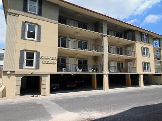 Silver Seas Condominiums - Unit 302 - Easy Walk to the Beach - FREE Wi-Fi, Tybee Island