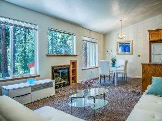 Stunning & Modern 3 BR Home in South Lake Tahoe
